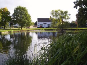 Hanley Swan pond near Orchard Side Self Catering Accommodation