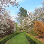 Bewdley Arley Arboretum in worcestershire