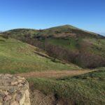 The Malvern Hills Habitat North Hill